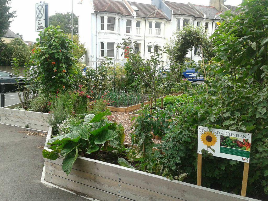 Urban Community Gardening